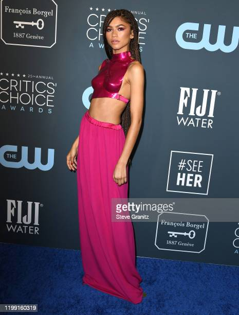 Zendaya arrives at the 25th Annual Critics' Choice Awards at Barker Hangar on January 12, 2020 in Santa Monica, California.