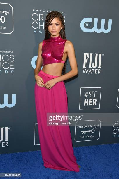 Zendaya attends the 25th Annual Critics' Choice Awards held at Barker Hangar on January 12 2020 in Santa Monica California
