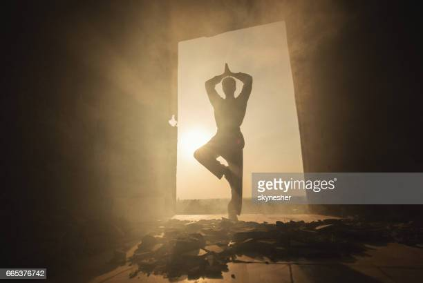 zen-like martial artist practicing yoga in tree pose at sunset. - kung fu yoga stock pictures, royalty-free photos & images