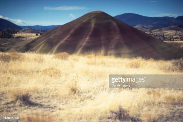 zen-like nature scene, painted hills - fossil site stock pictures, royalty-free photos & images