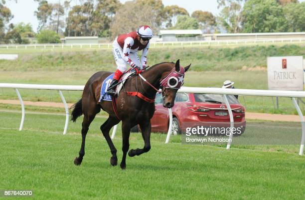Zepherine ridden by Dean Yendall goes out for the Patrick Of Coonawarra Maiden Plate at Hamilton Racecourse on October 29 2017 in Hamilton Australia
