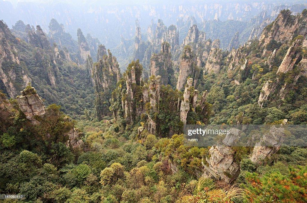 Zhangjiajie, China : Stock Photo