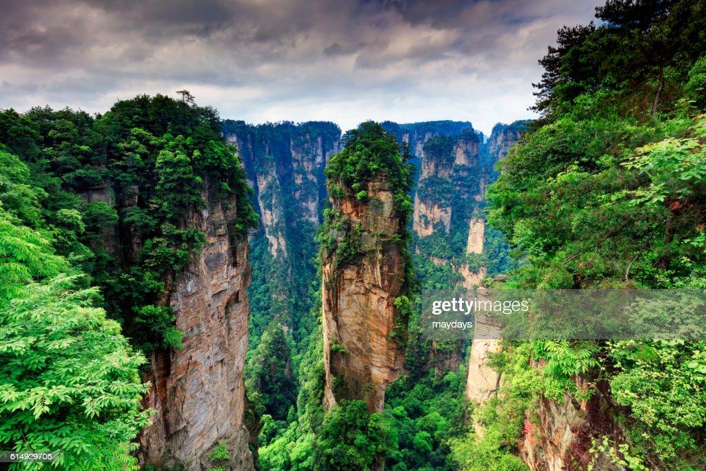 Zhangjiajie forest : Stock Photo