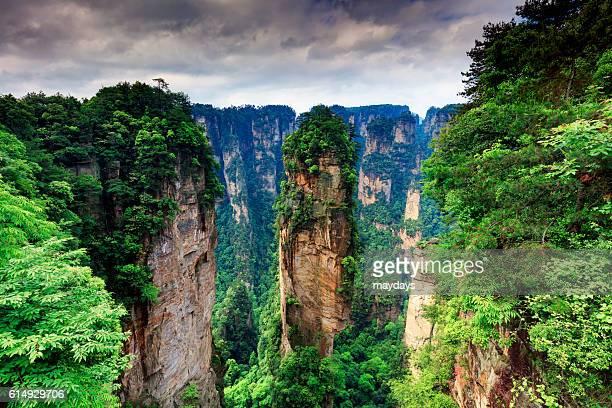 Zhangjiajie forest