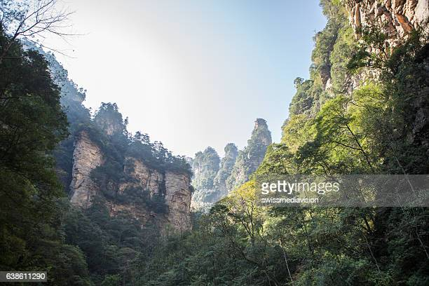 zhangjiajie national forest park, china - pandora peaks stock photos and pictures