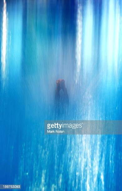 Zhu Jiaming of China competes in the Diving on day five of the Australian Youth Olympic Festival at Sydney Olympic Park Aquatic Centre on January 20...
