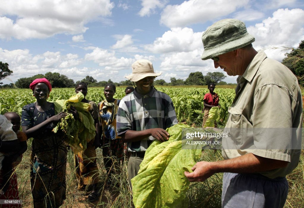 "TO GO WITH AFP STORY: ""Zimbabwe-vote-lan : News Photo"