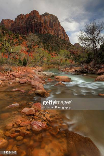 Zion and the The Virgin River