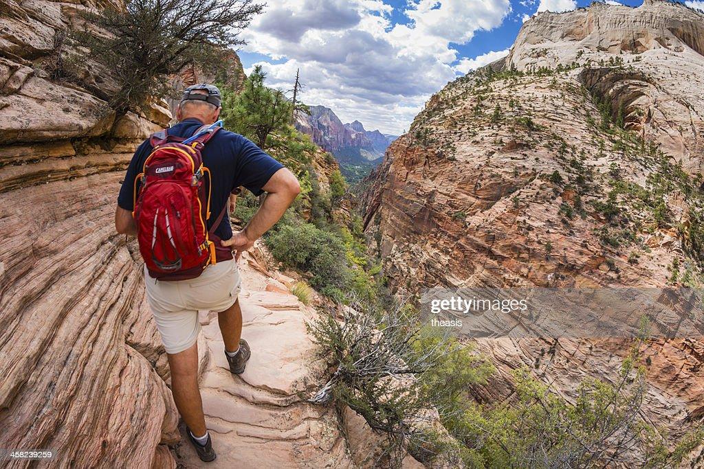Zion Canyon : Stock Photo
