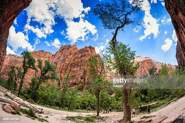 zion canyon - theasis stock pictures, royalty-free photos & images