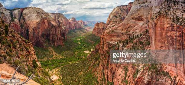 zion national park, utah, usa - zion national park stock pictures, royalty-free photos & images