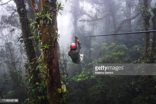 zip line - costa rica stock-fotos und bilder