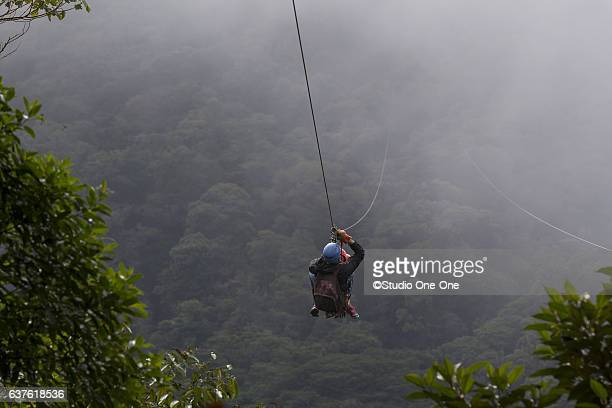 Zip Lining in the Fog