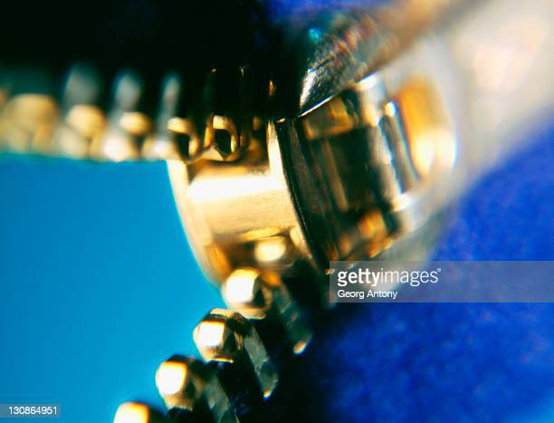 zip zipper zipping - crown close up stock pictures, royalty-free photos & images