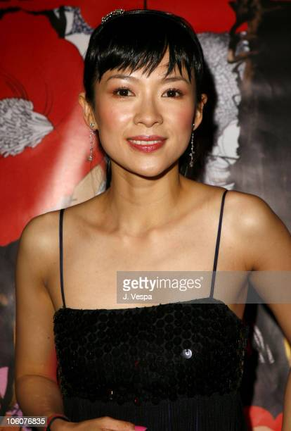 Ziyi Zhang during 2006 Cannes Film Festival Volver Premiere Dinner at Noga Beach in Cannes France