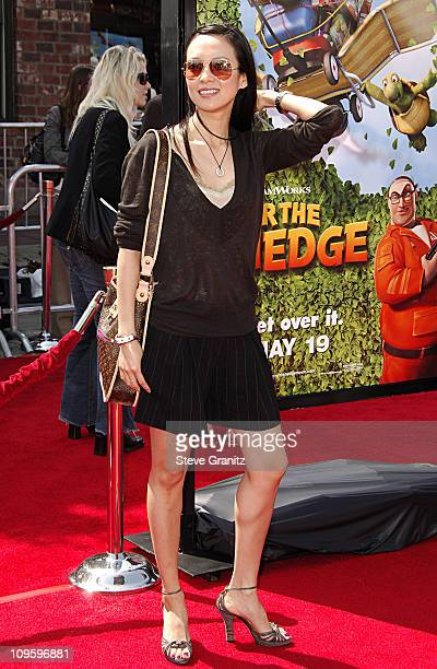 Ziyi Zhang during 'Over The Hedge' Los Angeles Premiere Arrivals at Mann Village Theatre in Westwood California United States