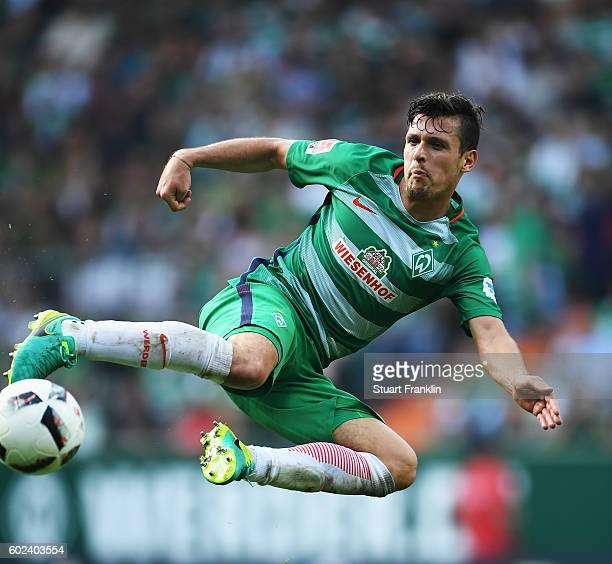Zlatko Junuzovic of Bremen in action during the Bundesliga match between Werder Bremen and FC Augsburg at Weserstadion on September 11 2016 in Bremen...