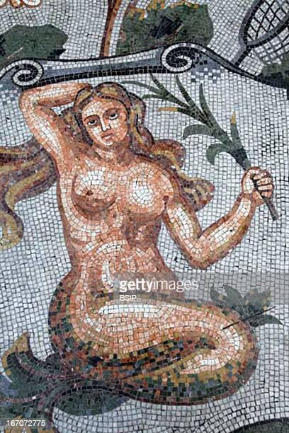 Zodiac Astral sign mosaic in Galleria Umberto Napoli Italy Virgo