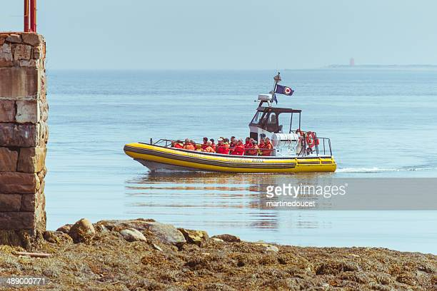 """zodiac on baie-sainte-catherine, departure of whale watching cruises. - """"martine doucet"""" or martinedoucet stock pictures, royalty-free photos & images"""