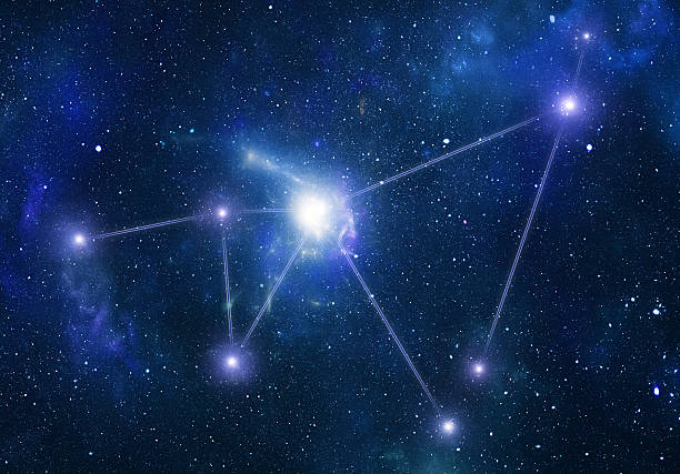 Zodiacal Constellations. Capricornus Wall Art