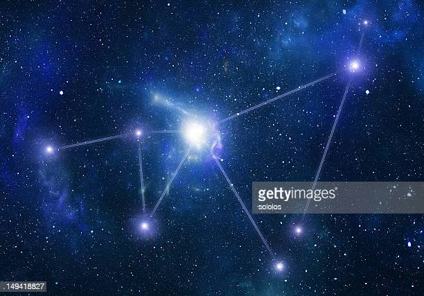 Zodiacal constellations. Capricornus
