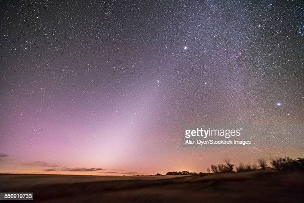Zodiacal light in dawn sky, Alberta, Canada.