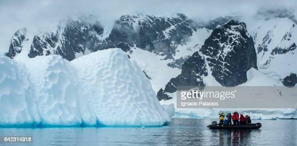 Zodiak cruise, Antarctica
