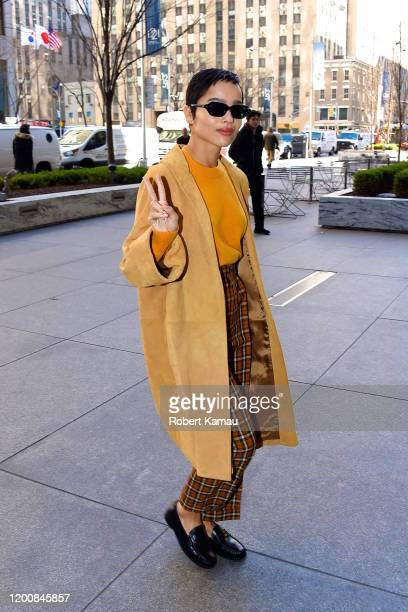 Zoe Kravitz seen out and about in Manhattan on February 14 2020 in New York City