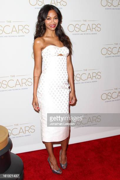 Zoe Saldana attends the Academy's Scientific and Technical awards ceremony held at the Beverly Hills Hotel on February 9 2013 in Beverly Hills...