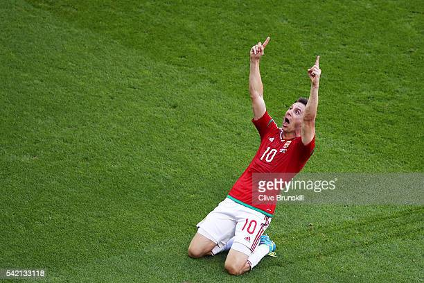 Zoltan Gera of Hungary celebrates scoring his team's first goal during the UEFA EURO 2016 Group F match between Hungary and Portugal at Stade des...