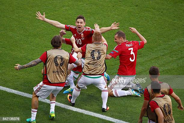 Zoltan Gera of Hungary celebrates scoring his team's first goal with his team mates during the UEFA EURO 2016 Group F match between Hungary and...