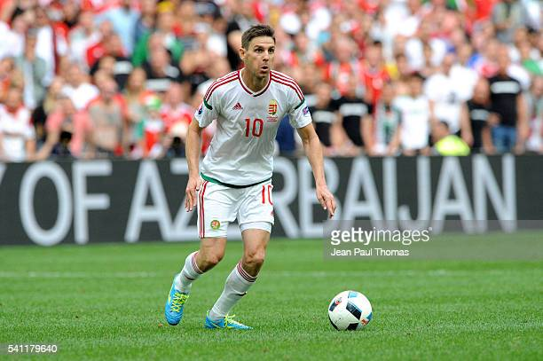 Zoltan GERA of Hungary during the UEFA EURO 2016 Group F match between Iceland and Hungary at Stade Velodrome on June 18 2016 in Marseille France