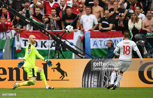 Zoltan Stieber of Hungary scores his team's second goal past Robert Almer of Austria during the UEFA EURO 2016 Group F match between Austria and...