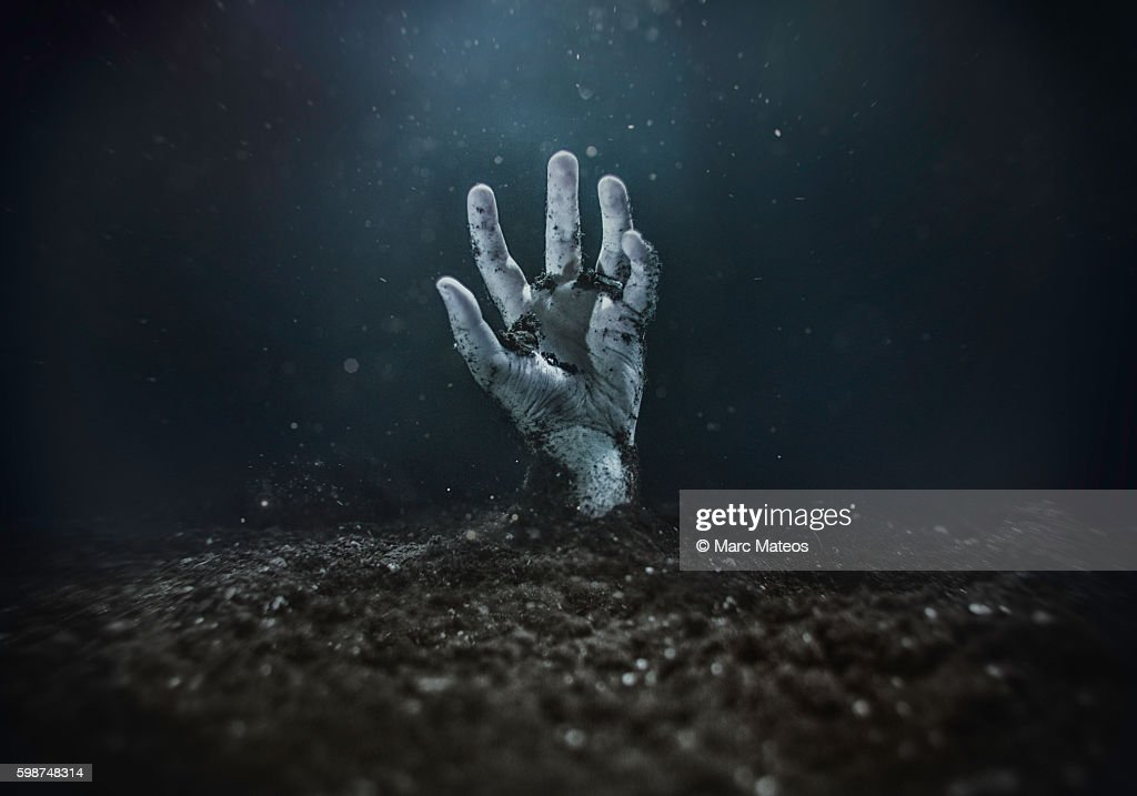 Zombie hand emerging from the ground : Stock Photo