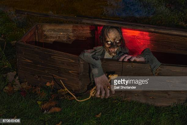 Zombie in the Coffin