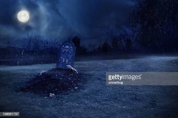 zombie aumento de grave - mausoleo fotografías e imágenes de stock