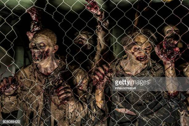 Zombies Behind A Fence