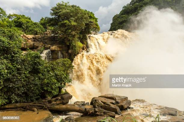 zongo falls - falling water stock photos and pictures