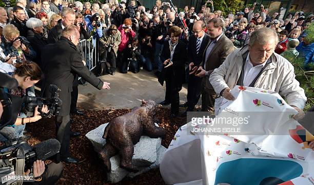 Zoo director Bernhard Blaszkiewitz unveils the sculpture Knut The Dreamer at the zoo in Berlin on October 24 2012 Knut who died suddenly aged four...