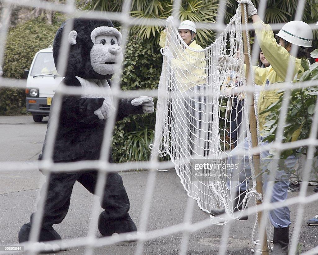 Earthquake Drill Held At Tokyo Zoo : News Photo