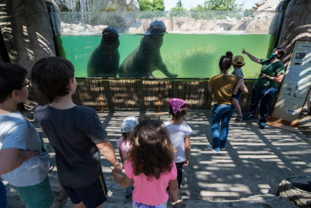 ITA: Zoom Torino Zoo Park Reopening