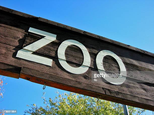 zoo - zoo stock pictures, royalty-free photos & images