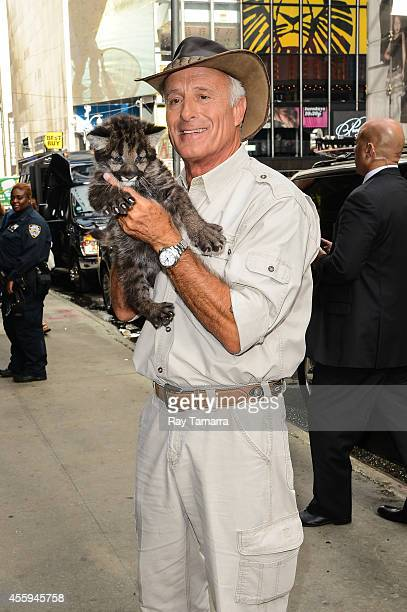 """Zookeeper Jack Hanna brings a rescued black cougar to the """"Good Morning America"""" taping at the ABC Times Square Studios on September 22, 2014 in New..."""