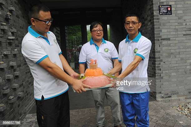 Zookeepers Make A Bamboo Cake For Panda On His 31yearold Birthday Celebration