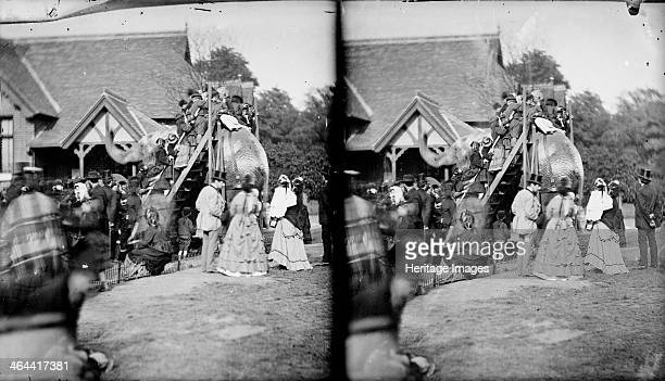 Zoological Gardens Regent's Park Westminster London c18701900 Stereo view of the Zoological Gardens in Regent's Park showing members of the public...