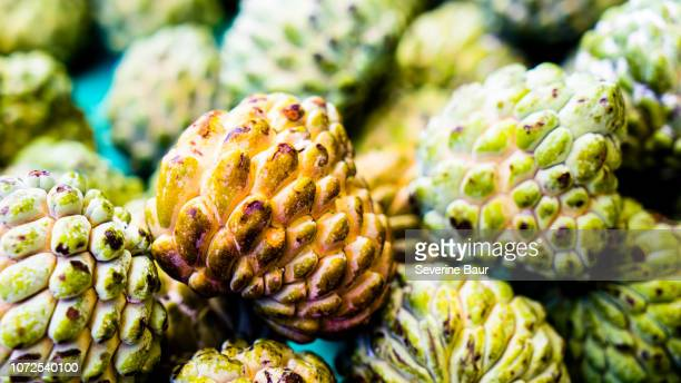zoom on apple sugar, castries, sainte-lucia, west indies - antilles stock pictures, royalty-free photos & images
