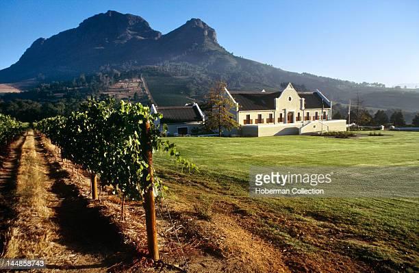 Zorgvliet Wine Estate Stellenbosch Western Cape