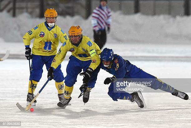 Zorky Krasnogorsk's and Volga Ulyanovsk's players compete in the Russian Bandy Super League Russia's top bandy division match in Krasnogorks outside...