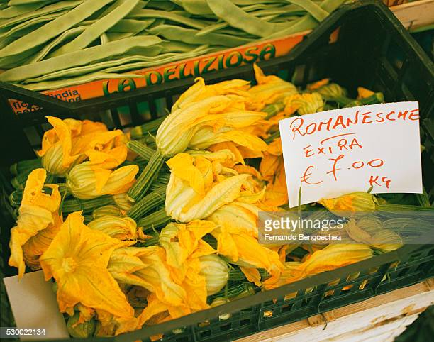 Zucchini Blossoms and Fava Beans