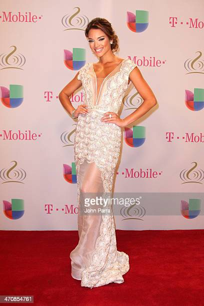 Zuleyka Rivera attends Premio Lo Nuestro a la Musica Latina 2014 at American Airlines Arena on February 20 2014 in Miami Florida